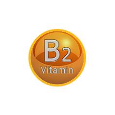 Витамин В2, Рибофлавин