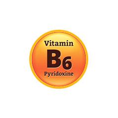 Витамин В6, Пиридоксин