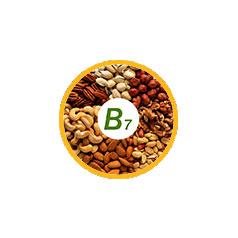 Биотин, витамин B7, H