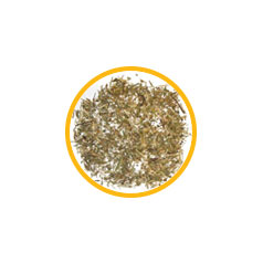 Экстракт травы спорыша (Горца птичьего)